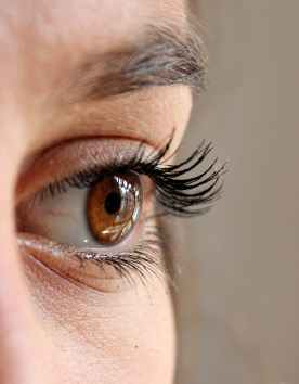 woman face eye eyelashes